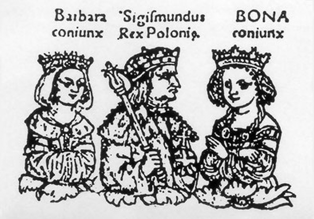 Coronation sejm of queen Barbara Zapolya in Cracow. 1512.
